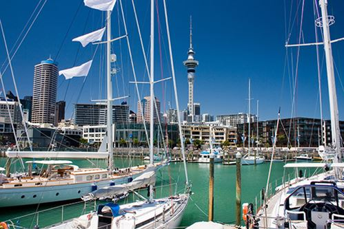 Great Things To Do In Auckland