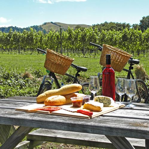 5 Relaxing Activities for your stay in Blenheim
