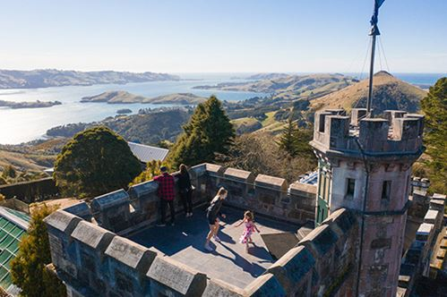 8 Awesome Things to do in Dunedin