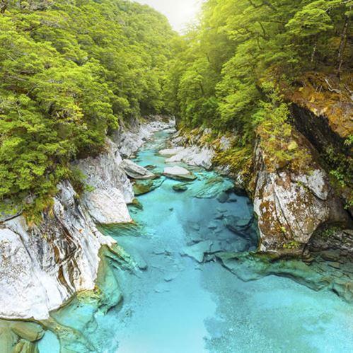 5 Things You Didn't Know About Haast