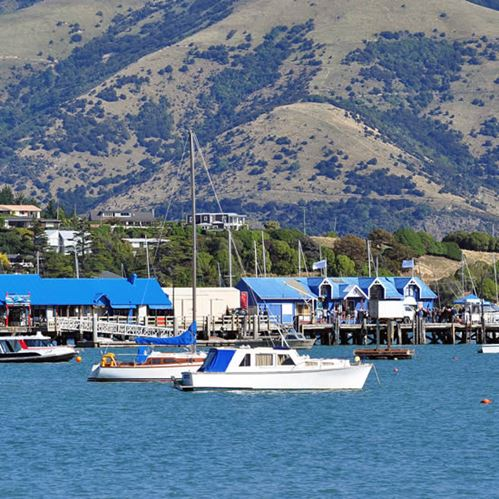 Top 3 day trips when staying in Christchurch