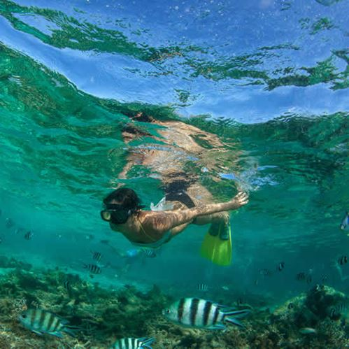 The best snorkelling spots around Niue